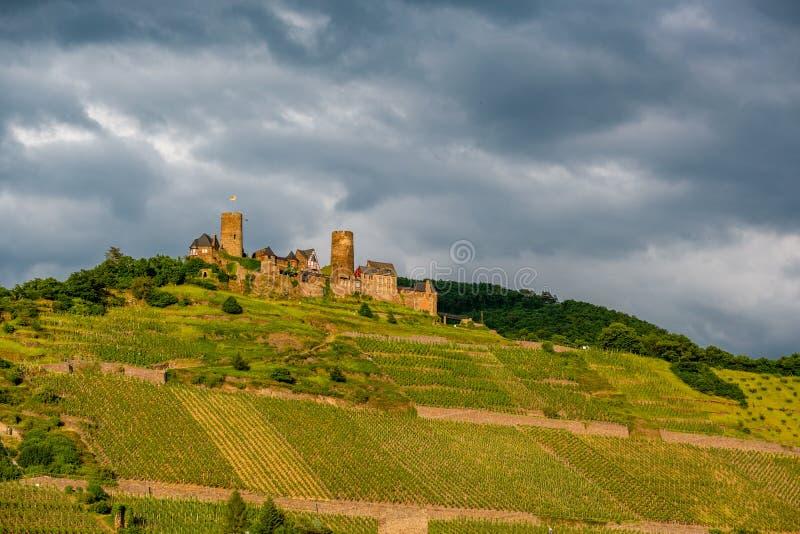 Thurant slott och vingårdar ovanför den Moselle floden nära Alken, Tyskland royaltyfria foton