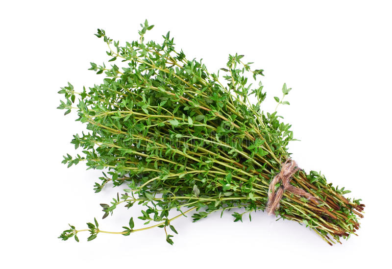 Thyme stock foto's