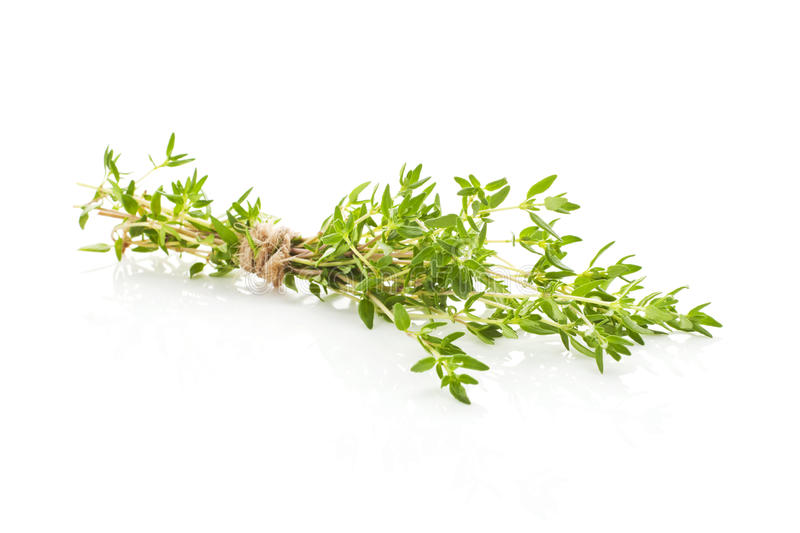 Download Thyme Isolated. Royalty Free Stock Image - Image: 20562756