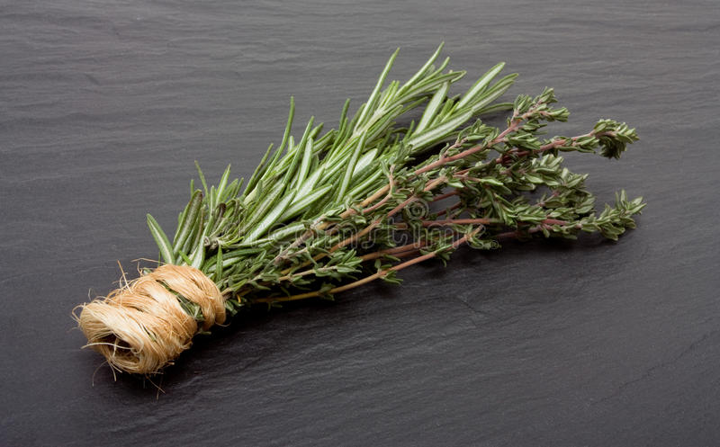 Thymian Rosemary-N stockfoto