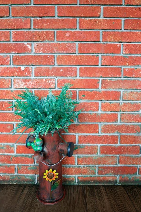 Thymophyllia amarillea las flores, verano natural en vagos rojos de la pared de ladrillo imagenes de archivo