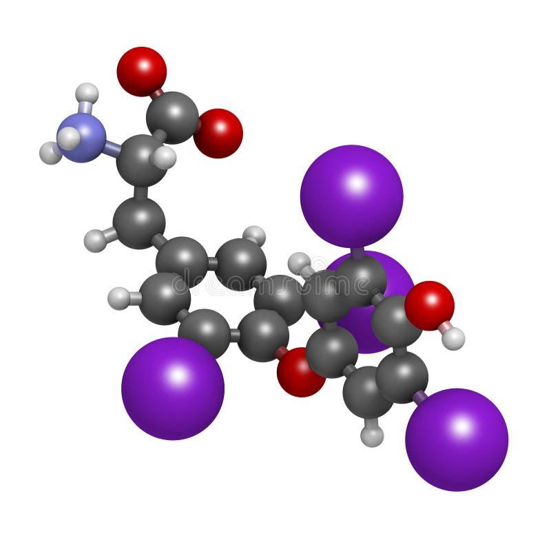 Thyroxinemolekyl, kemisk struktur. Sköldkörtelhormonth stock illustrationer