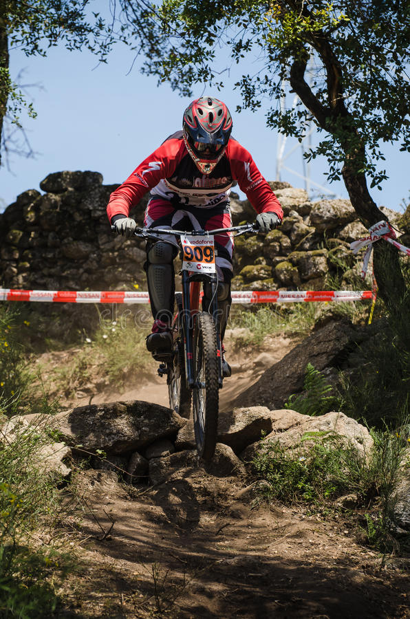 Download Tiago Martins editorial stock image. Image of downhill - 24785484