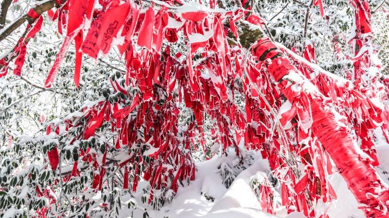 Tianmen-Berg, Zhangjiajie, Hunan, China, Winterschnee und Smog, Niederlassungen, rote Bänder stockbilder