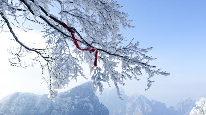 Tianmen Mountain, Zhangjiajie, Hunan, China, winter snow, smog, branches, red ribbons,. Blessing stock photography