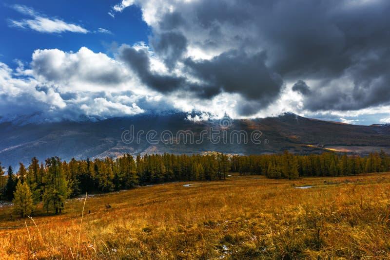 Download Tianshan Góry W Jesieni W Xinjiang Zdjęcie Stock - Obraz złożonej z szczyt, chiny: 53782448