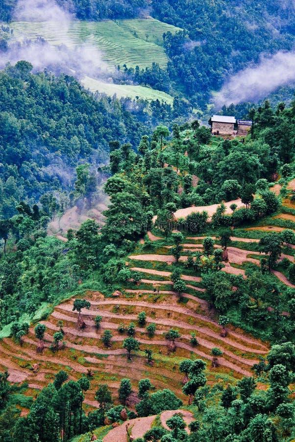 Tibétain d'horizontal image stock