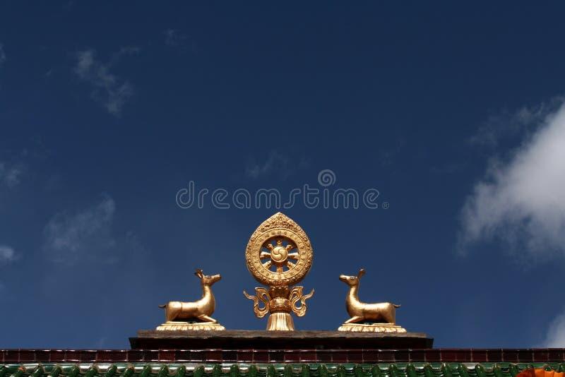 tibet arkivfoto