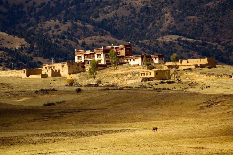 Tibet altiplano stock photography