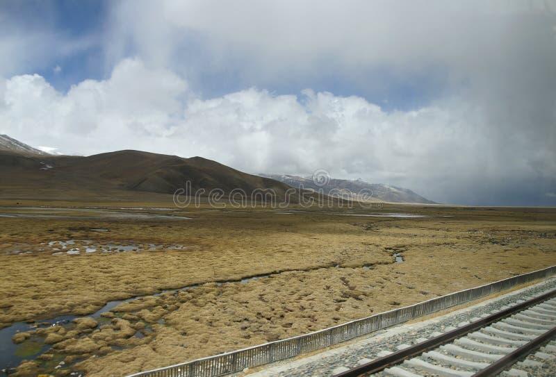 tibet drev royaltyfri bild