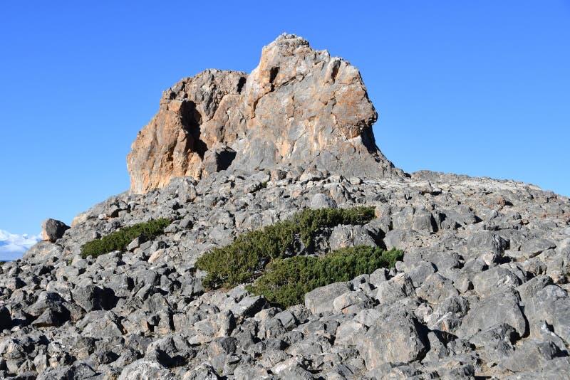Tibet Geoglyph p? kusten av Nam Tso sj?n, 4718 meter ovann?mnd havsniv? royaltyfria foton