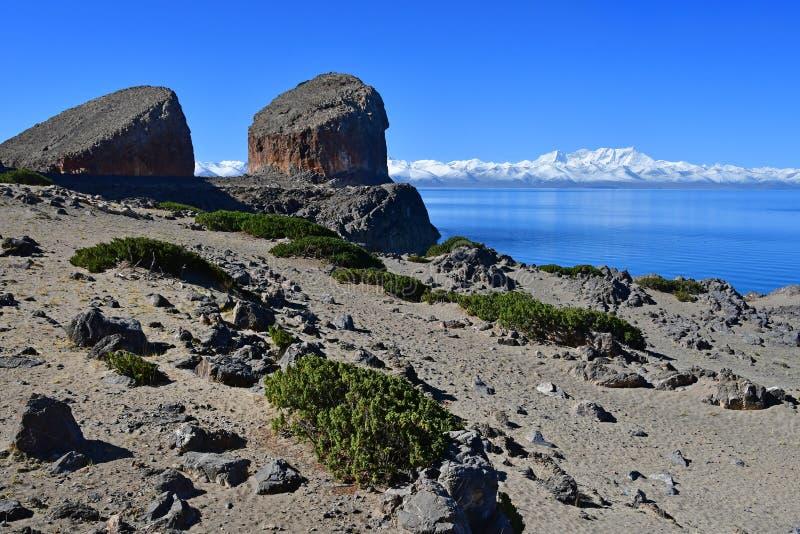Tibet helig sj? Nam-Tso Nam Tso i sommar, 4718 meter ovanf?r havsniv? Geoglyph - ?ronen av h?sten p? udde Tomchok och Ny royaltyfria bilder