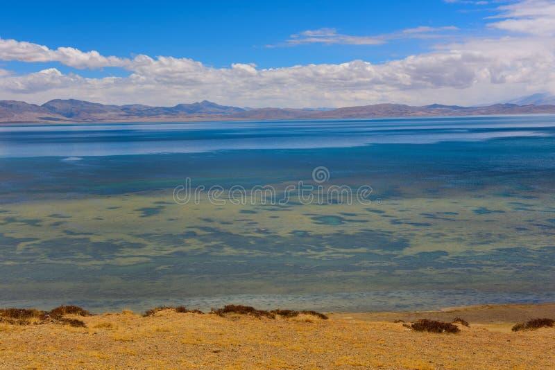 Tibet sjö Manasarovar royaltyfri fotografi