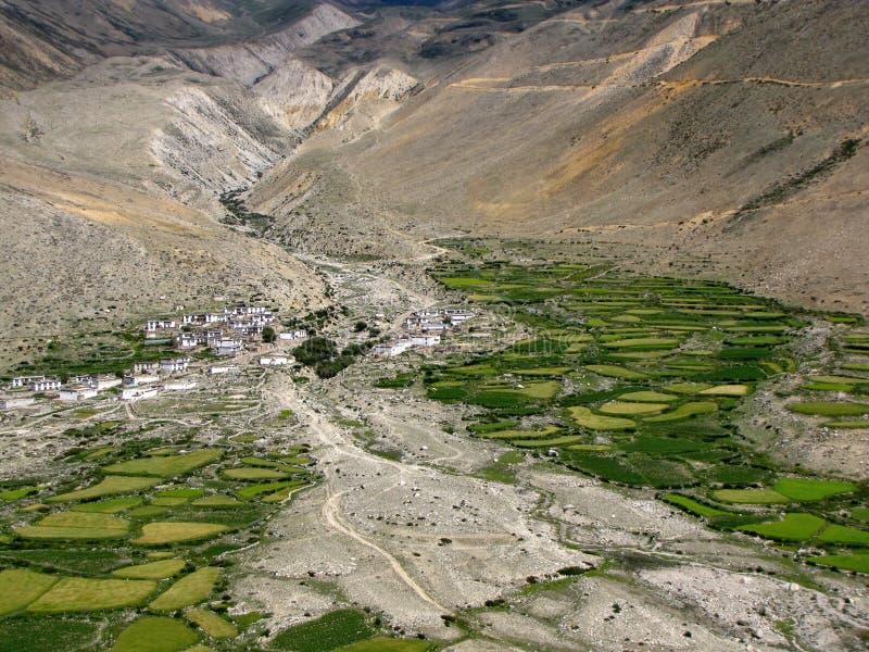 Tibetaans dorp in een vallei die door bergen, Tibet, China wordt omringd stock foto's