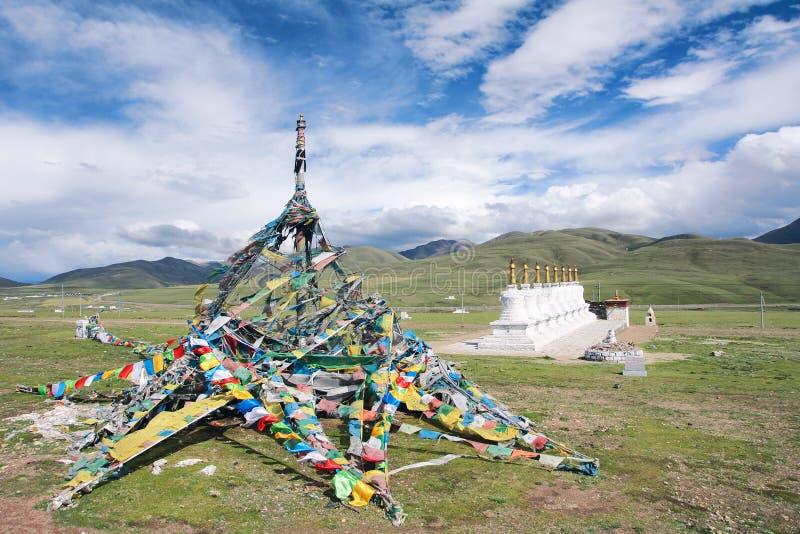 Tibetaans landschap stock foto's