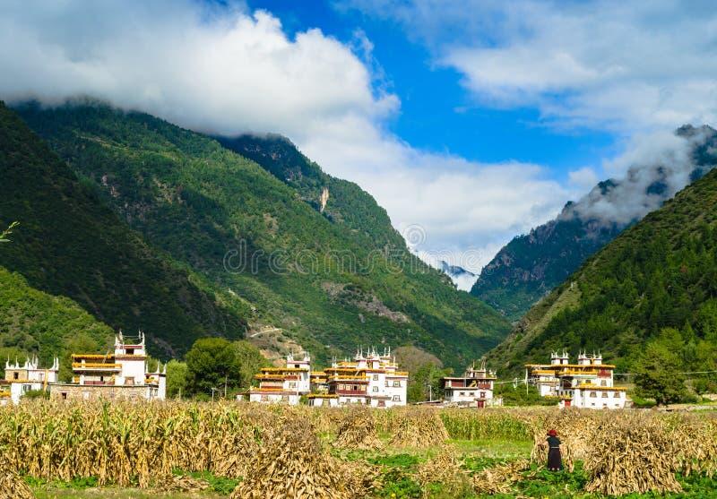 tibetan by royaltyfri fotografi