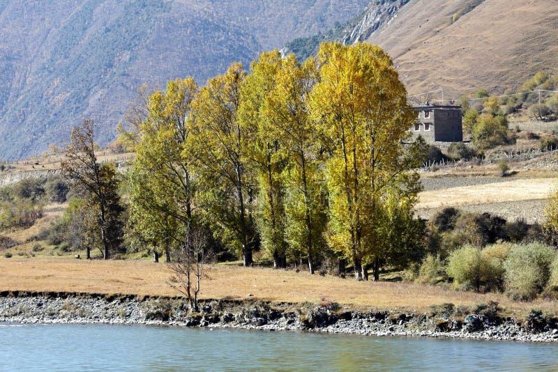 Tibetan dorp stock afbeeldingen