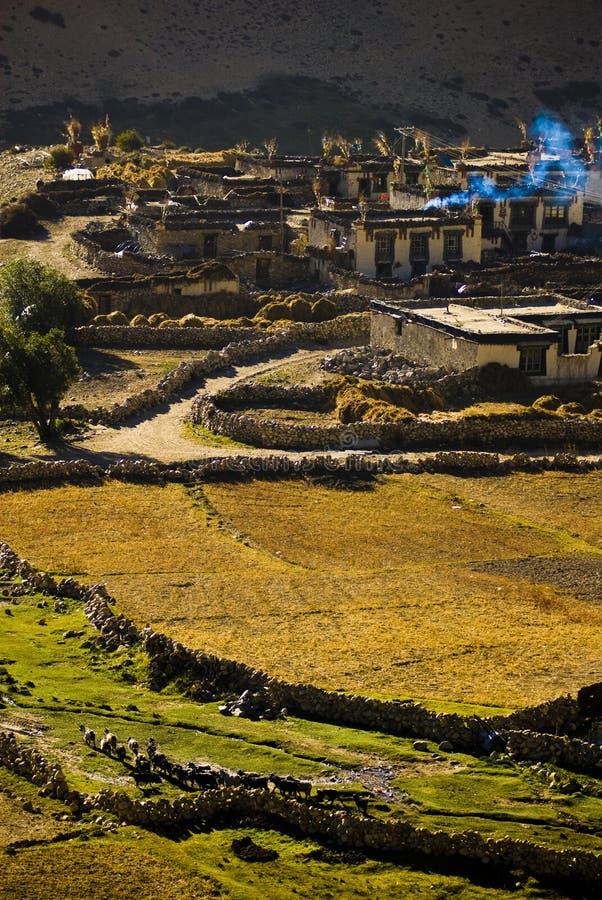 tibetan by för liggande arkivfoto