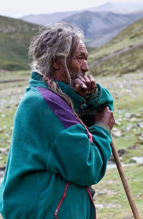 tibetan herdsman arkivfoton
