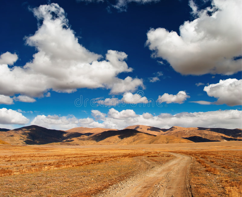 tibetan liggande royaltyfria foton