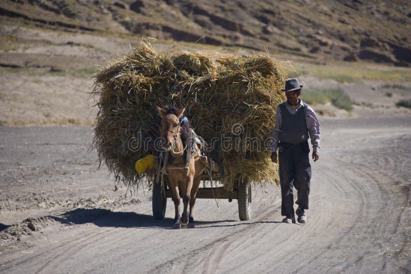 Tibetan man with horse & cart - Tibet royalty free stock images