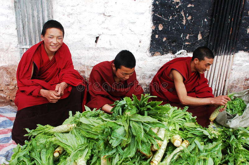 Tibetan monks royalty free stock photos