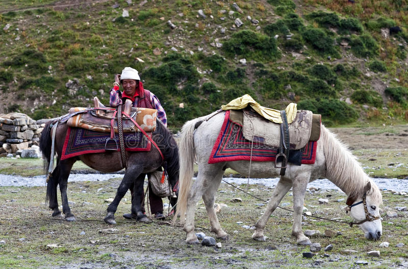 Download Tibetan nomad editorial photo. Image of nepal, colour - 23894486