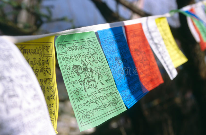 Tibetan prayer flags. Colorful tibetan buddhist prayer flags royalty free stock image