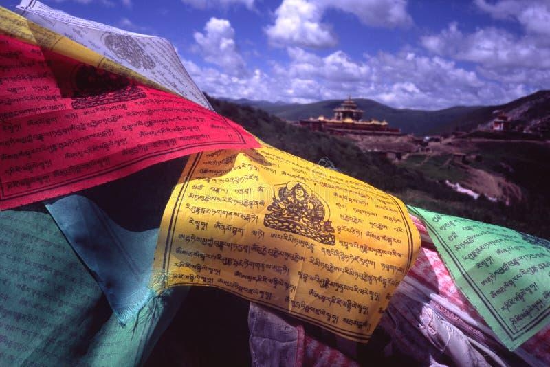 Tibetan prayer flags. Multi-color tibetan prayer flags in seda, china royalty free stock image
