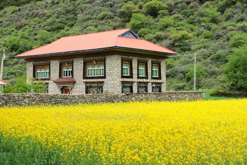 Tibetan residence royalty free stock images