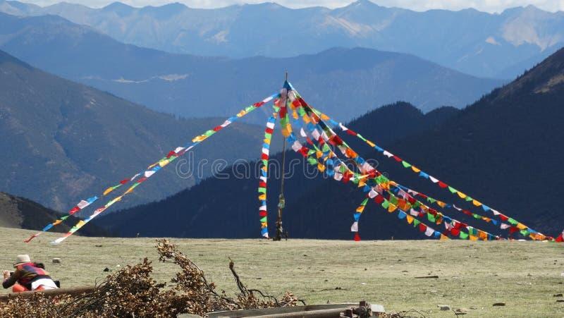 Tibetana bönflaggor på ett berg royaltyfri foto