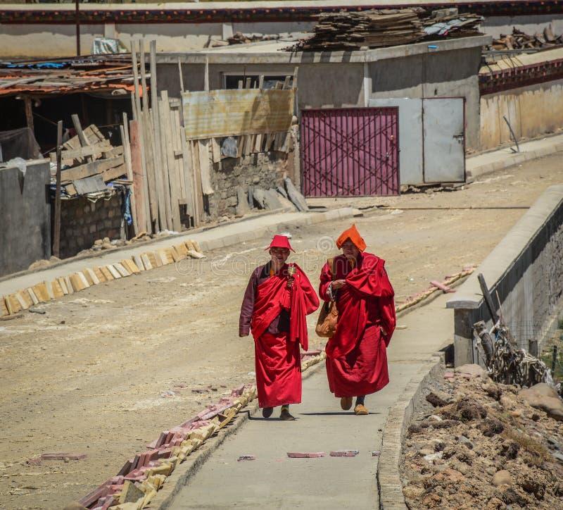 Tibetana munkar som sitter på kullen arkivfoto