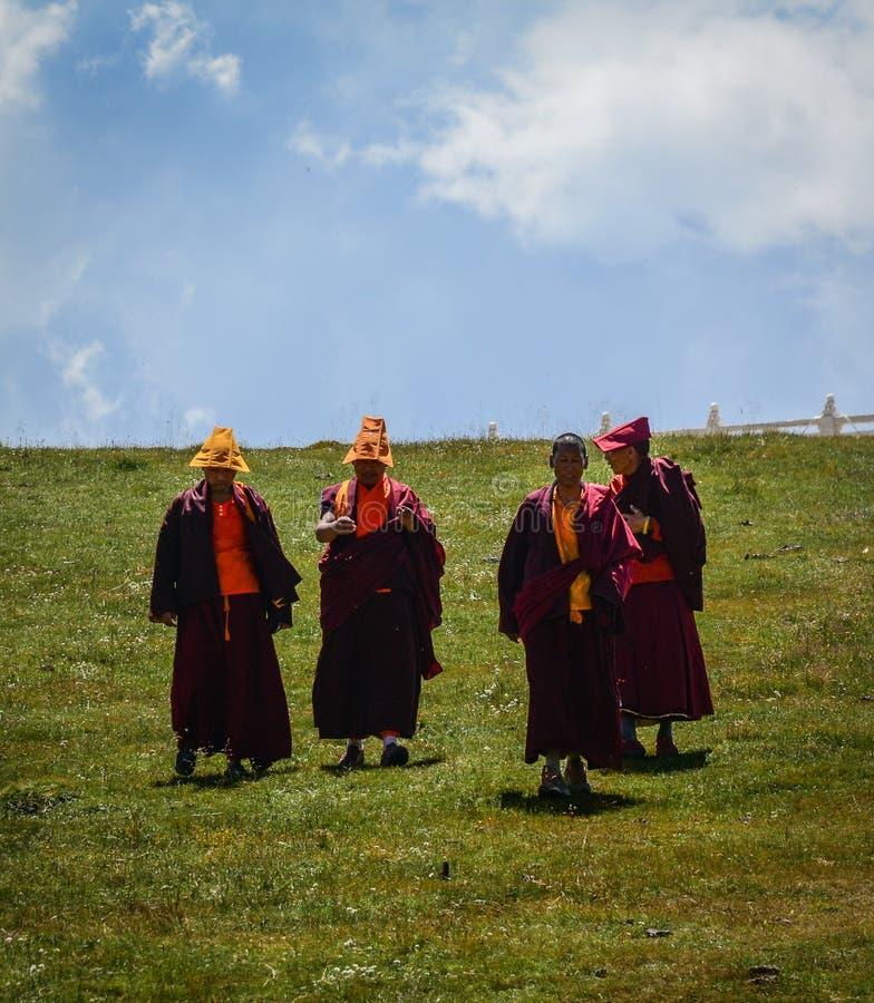 Tibetana munkar som sitter på kullen royaltyfria bilder