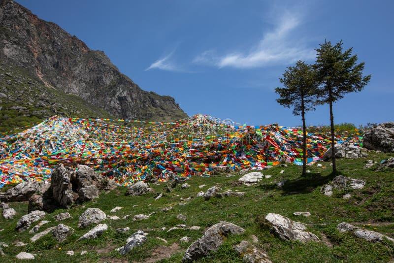 Tibetana spelareflaggor i kullen royaltyfri fotografi