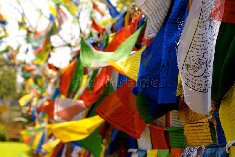 Tibetanische Gebet-Markierungsfahnen lizenzfreie stockfotos