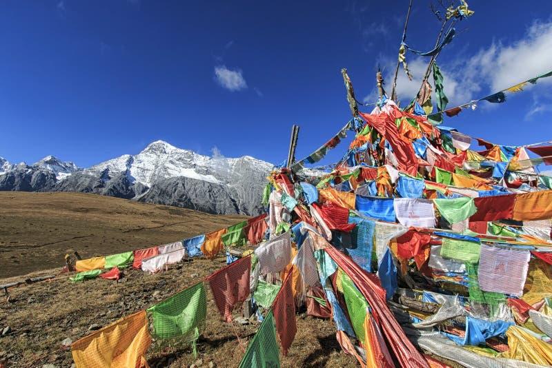 Tibetanische Gebets-Flaggen auf Vordergrund und Jade Dragon Snow Mountain auf Hintergrund lizenzfreies stockfoto