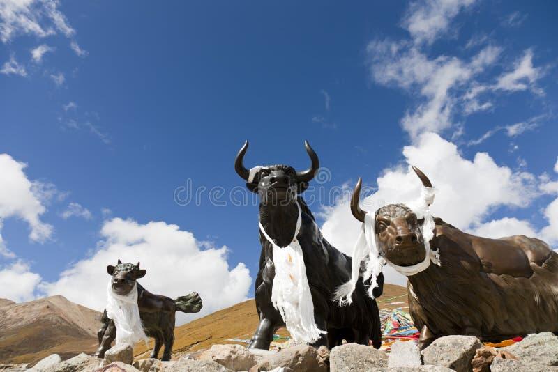 Tibetanische Stierstatue lizenzfreies stockfoto