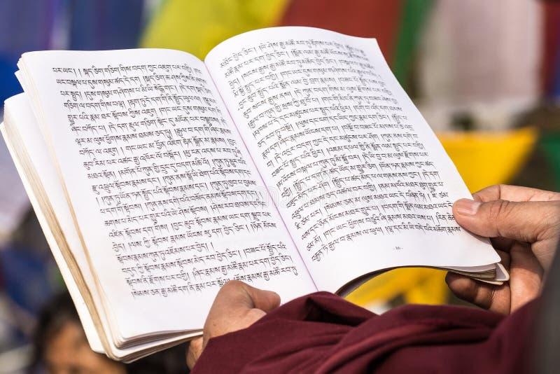 Tibetanischer Mönch feiern eine Zeremonie unter dem bodhi Baum stockfoto