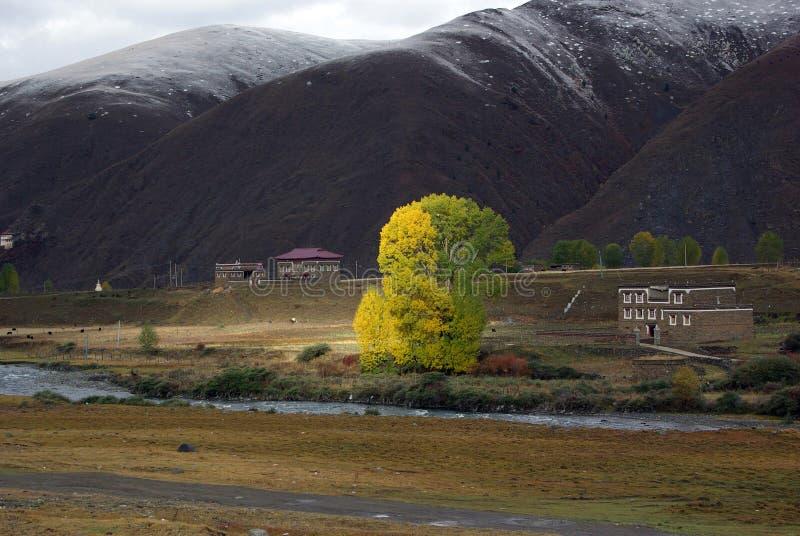 Tibetanisches Dorf lizenzfreies stockfoto