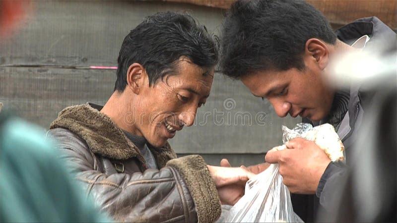 Tibetans söker en säljande matsutake i den Jidi byn, sitter i mitten av matsutakeproduktionområdet i Shangri-La royaltyfria bilder