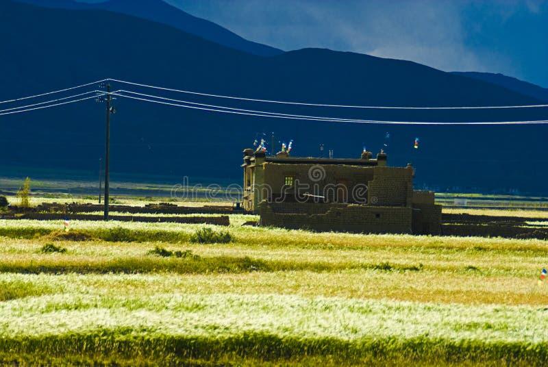 tibetant byggande arkivbild