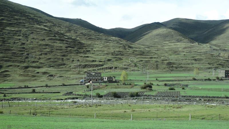 Tibetant byhus på en slätt i Sichuan royaltyfria bilder