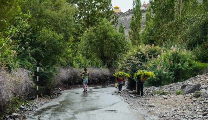 Tibetant folk som går på den lantliga vägen arkivbilder