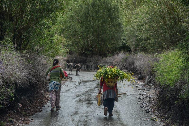 Tibetant folk som går på den lantliga vägen fotografering för bildbyråer