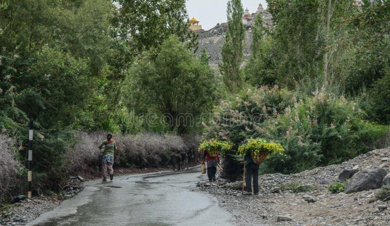 Tibetant folk som går på den lantliga vägen royaltyfria bilder