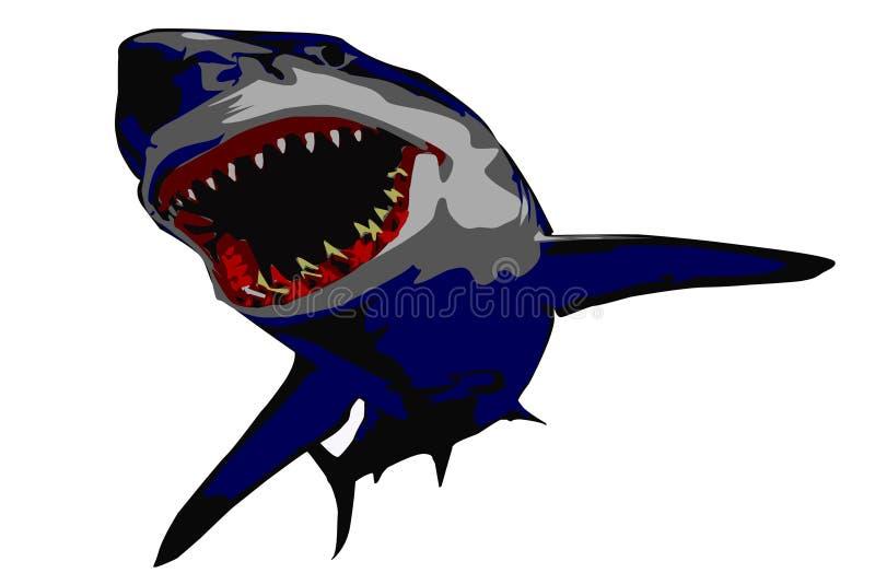 Tiburón ilustración del vector