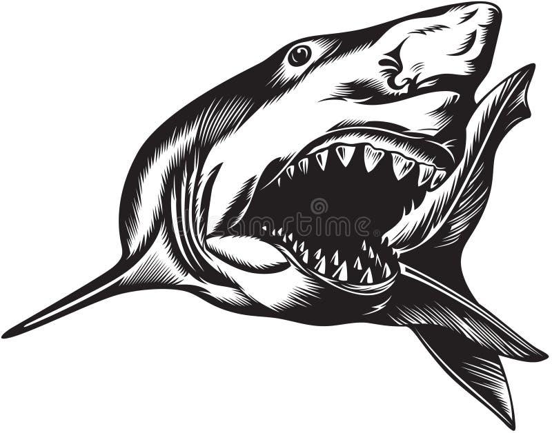 Tiburón agresivo grande libre illustration