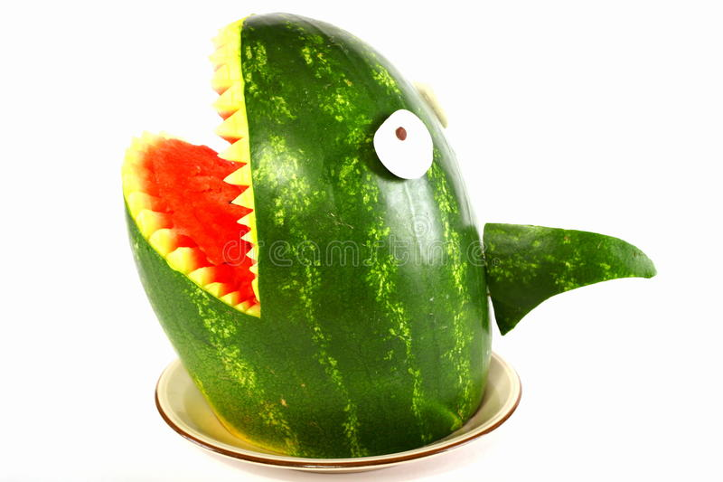 Tiburón de la sandía imagenes de archivo