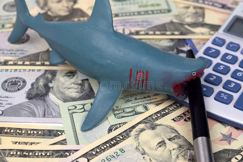 Tiburón de préstamo del dólar foto de archivo