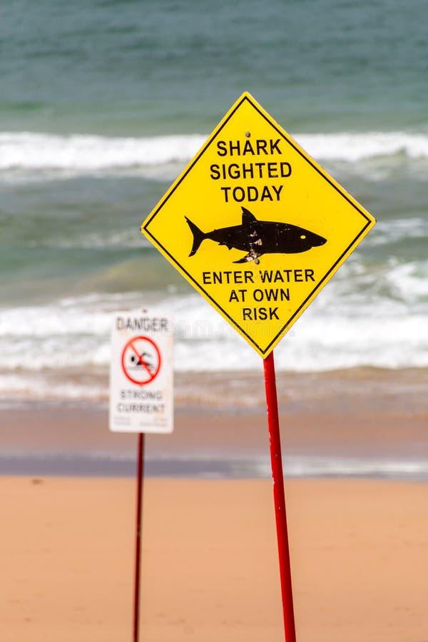 Tiburón que ve la señal de peligro en la playa imagen de archivo libre de regalías